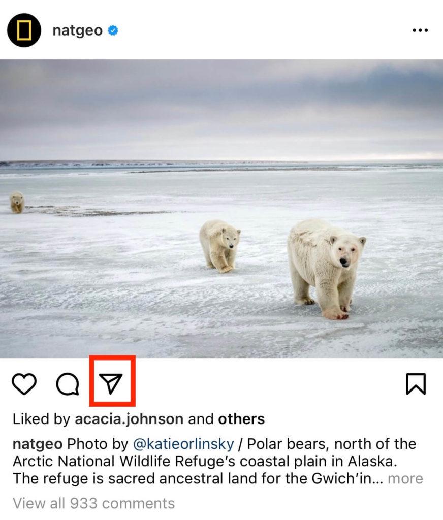 Instagram Natgeo DM